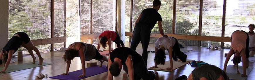 yoga kurse rhein-main